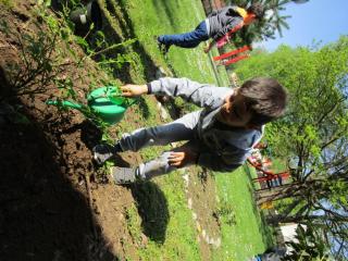 Sadnja eko-vrtova Voćin