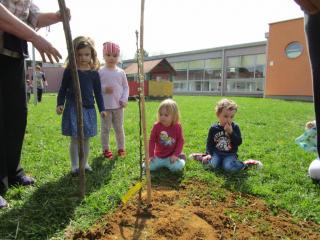 Sadnja eko-vrtova Virovitica